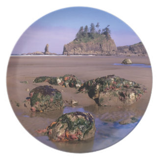 WA, Olympic NP, Second Beach with tidepools and Dinner Plate