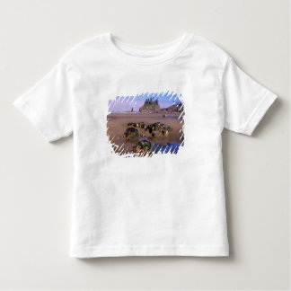 WA, Olympic NP, Second Beach with tidepools and Toddler T-shirt
