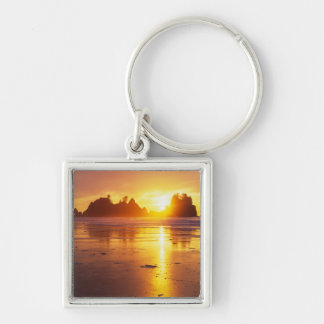 WA, Olympic NP, Shi Shi beach at sunset, Point Keychain