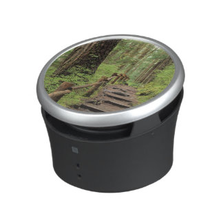 WA, Olympic NP, Sol Duc Valley, rainforest Bluetooth Speaker