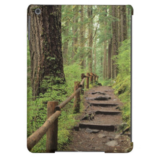 WA, Olympic NP, Sol Duc Valley, rainforest Case For iPad Air