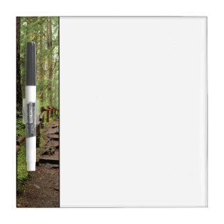WA, Olympic NP, Sol Duc Valley, rainforest Dry Erase Board