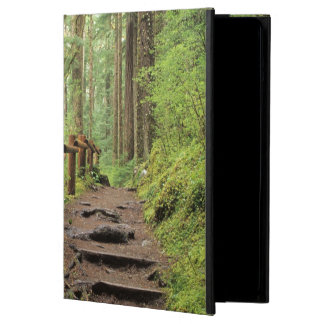WA, Olympic NP, Sol Duc Valley, rainforest iPad Air Case