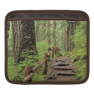 WA, Olympic NP, Sol Duc Valley, rainforest Sleeve For iPads