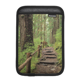 WA, Olympic NP, Sol Duc Valley, rainforest Sleeve For iPad Mini