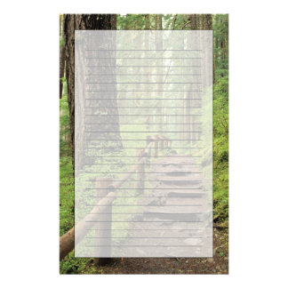 WA, Olympic NP, Sol Duc Valley, rainforest Stationery