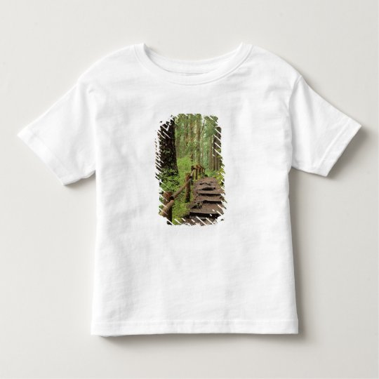 WA, Olympic NP, Sol Duc Valley, rainforest Toddler T-shirt