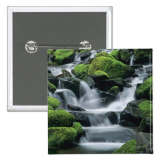 WA Olympic NP Sol Duc Valley stream with Pinback Button