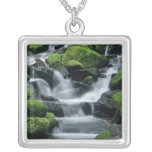 WA, Olympic NP, Sol Duc Valley, stream with Pendant