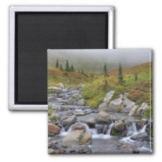 WA parque nacional del Monte Rainier cala de Edi Imán De Nevera