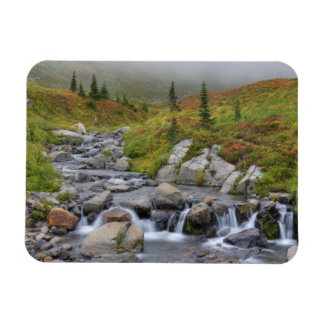 WA parque nacional del Monte Rainier cala de Edi Iman De Vinilo
