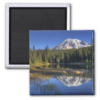 WA parque nacional del Monte Rainier el Monte Ra Imán De Frigorifico