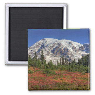 WA parque nacional del Monte Rainier valle del p Imanes