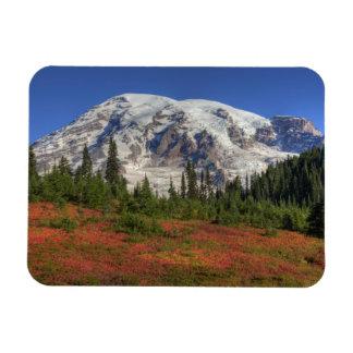 WA parque nacional del Monte Rainier valle del p Imán Flexible