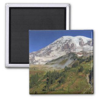 WA parque nacional del Monte Rainier visión desd Iman De Frigorífico