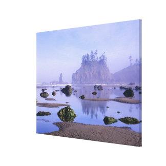 WA, parque nacional olímpico, segunda playa, Impresión En Lienzo