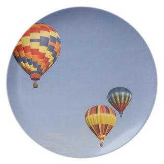WA, Prosser, The Great Prosser Balloon Rally, 2 Plate