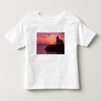 WA, San Juan Island, Lime Kiln Lighthouse, 1919, Toddler T-shirt
