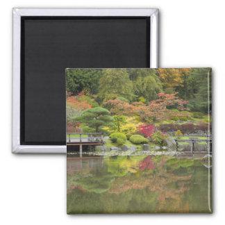 WA, Seattle, Washington Park Arboretum, 3 Magnet