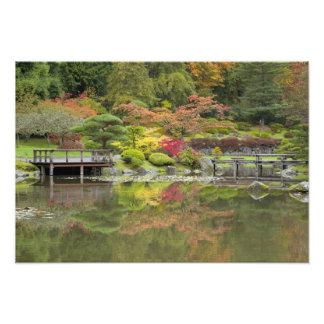 WA, Seattle, Washington Park Arboretum, 3 Photo Print