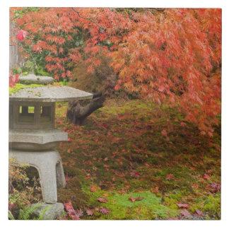 WA, Seattle, Washington Park Arboretum, Japanese 2 Tile