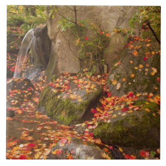 WA, Seattle, Washington Park Arboretum, Japanese Ceramic Tile