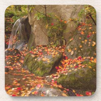 WA, Seattle, Washington Park Arboretum, Japanese Drink Coaster