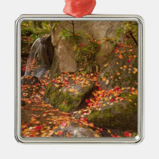 WA, Seattle, Washington Park Arboretum, Japanese Metal Ornament