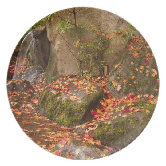 WA, Seattle, Washington Park Arboretum, Japanese Plate
