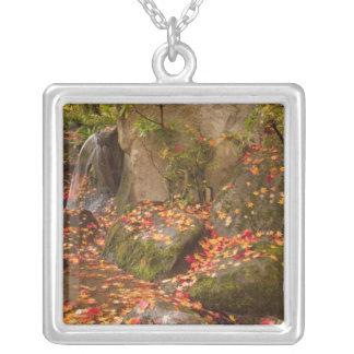 WA, Seattle, Washington Park Arboretum, Japanese Silver Plated Necklace