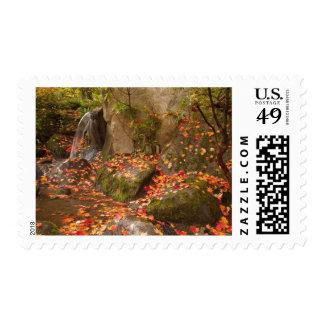 WA, Seattle, Washington Park Arboretum, Japanese Stamp