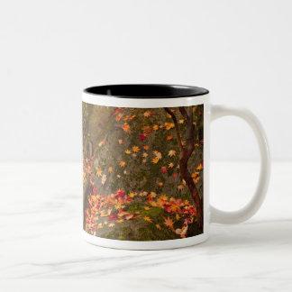 WA, Seattle, Washington Park Arboretum, Japanese Two-Tone Coffee Mug