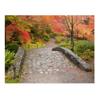 WA, Seattle, Washington Park Arboretum, Postcard