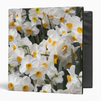 WA, Skagit Valley, Daffodil pattern Binders