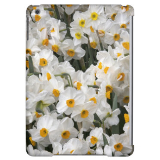WA, Skagit Valley, Daffodil pattern iPad Air Cover