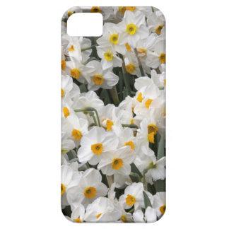 WA, Skagit Valley, Daffodil pattern iPhone SE/5/5s Case