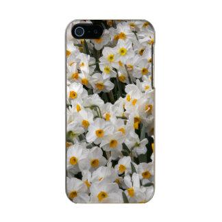 WA, Skagit Valley, Daffodil pattern Metallic Phone Case For iPhone SE/5/5s