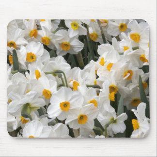WA Skagit Valley Daffodil pattern Mousepads