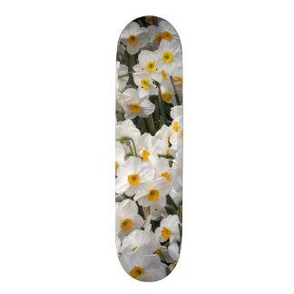 WA, Skagit Valley, Daffodil pattern Skateboard
