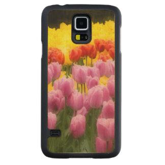 WA, Skagit Valley, Roozengaarde Tulip Garden, 2 Carved Maple Galaxy S5 Case