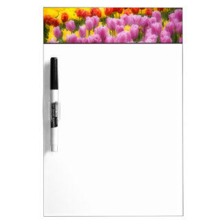 WA, Skagit Valley, Roozengaarde Tulip Garden, 2 Dry-Erase Whiteboards