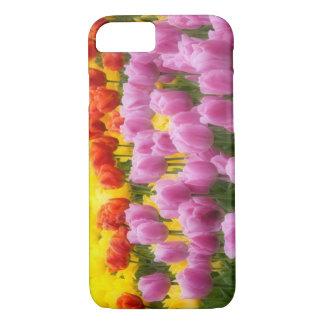 WA, Skagit Valley, Roozengaarde Tulip Garden, 2 iPhone 8/7 Case