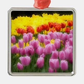 WA, Skagit Valley, Roozengaarde Tulip Garden, 2 Metal Ornament