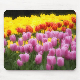 WA Skagit Valley Roozengaarde Tulip Garden 2 Mousepad
