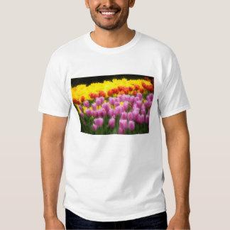 WA, Skagit Valley, Roozengaarde Tulip Garden, 2 Shirt