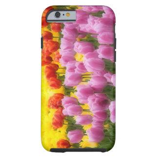 WA, Skagit Valley, Roozengaarde Tulip Garden, 2 Tough iPhone 6 Case