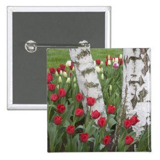 WA, Skagit Valley, Roozengaarde Tulip Garden Pinback Buttons
