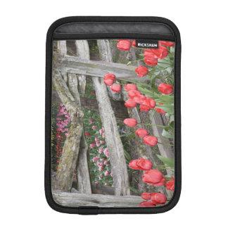 WA, Skagit Valley, Roozengaarde Tulip Garden, iPad Mini Sleeve