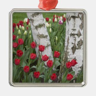 WA, Skagit Valley, Roozengaarde Tulip Garden Metal Ornament