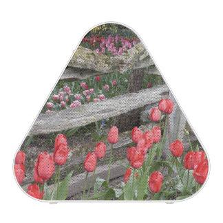 WA, Skagit Valley, Roozengaarde Tulip Garden, Speaker